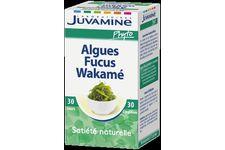 Algues Fucus Wakamé de Juvamine