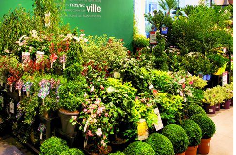 c95cfed273cecc Année 2018 - Bricolage, jardinage : Toute l'actualité du secteur ...