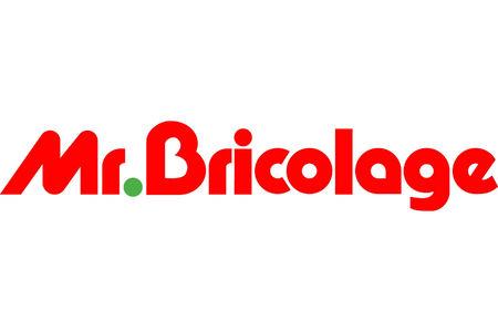 c7d0ff78592 Mr.Bricolage   News de la chaîne française de bricolage - LSA Conso