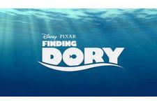 DVD – Le Monde de Dory