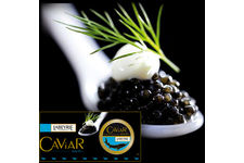 Caviar royal Baeri