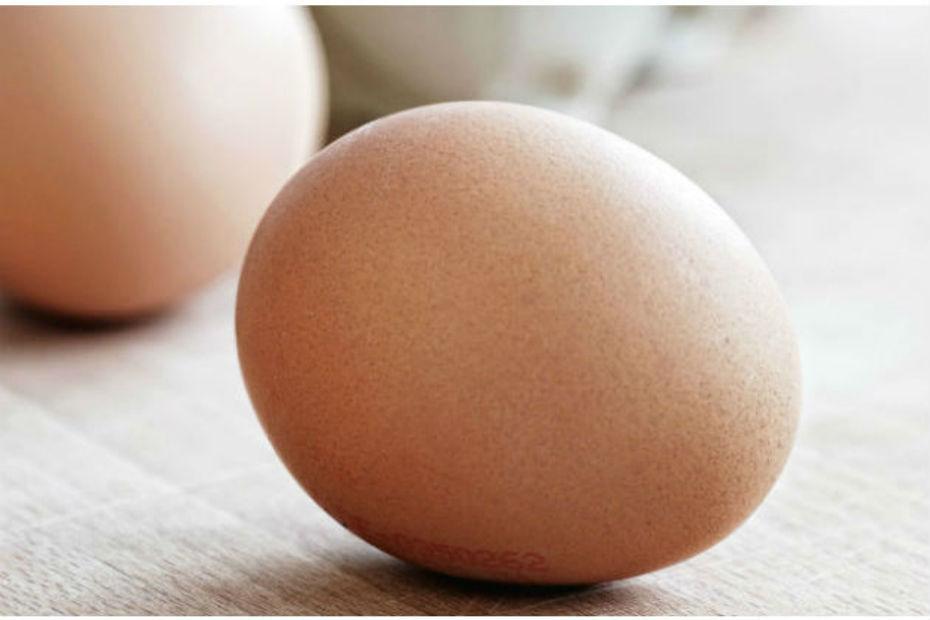 Monoprix signe la fin de la commercialisation frais for Oeuf de poule conservation