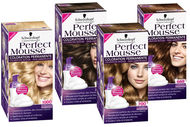 Perfect Mousse de Schwarzkopf