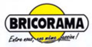 bricorama_logo