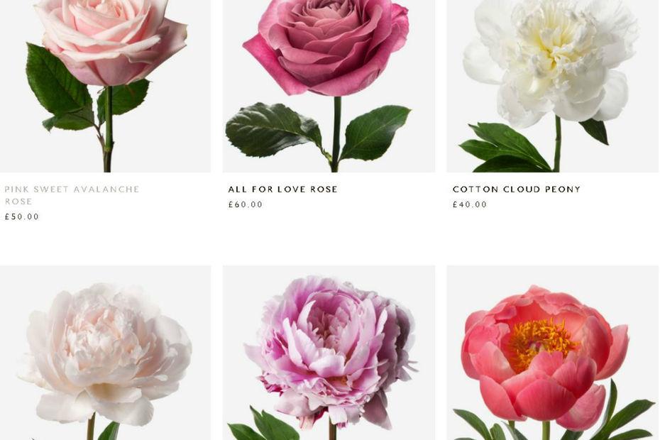 068c2d5a0d7666 FlowerBx livre désormais ses fleurs en France - Bricolage, jardinage