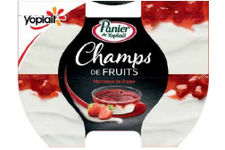 Panier de Yoplait Champs de Fruits