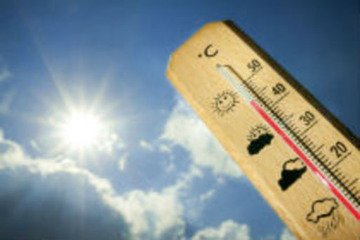 Canicule dossier home