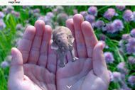 Magic Leap vient de lever 542 millions de dollars.
