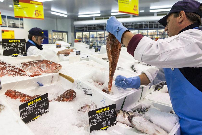 Le programme des émissions de la particularité de la pêche nationale