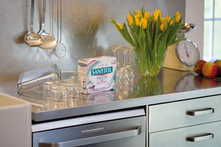 sanytol lave la vaisselle et le lave vaisselle. Black Bedroom Furniture Sets. Home Design Ideas